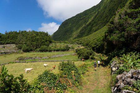 Visitar Ilha das Flores, Açores