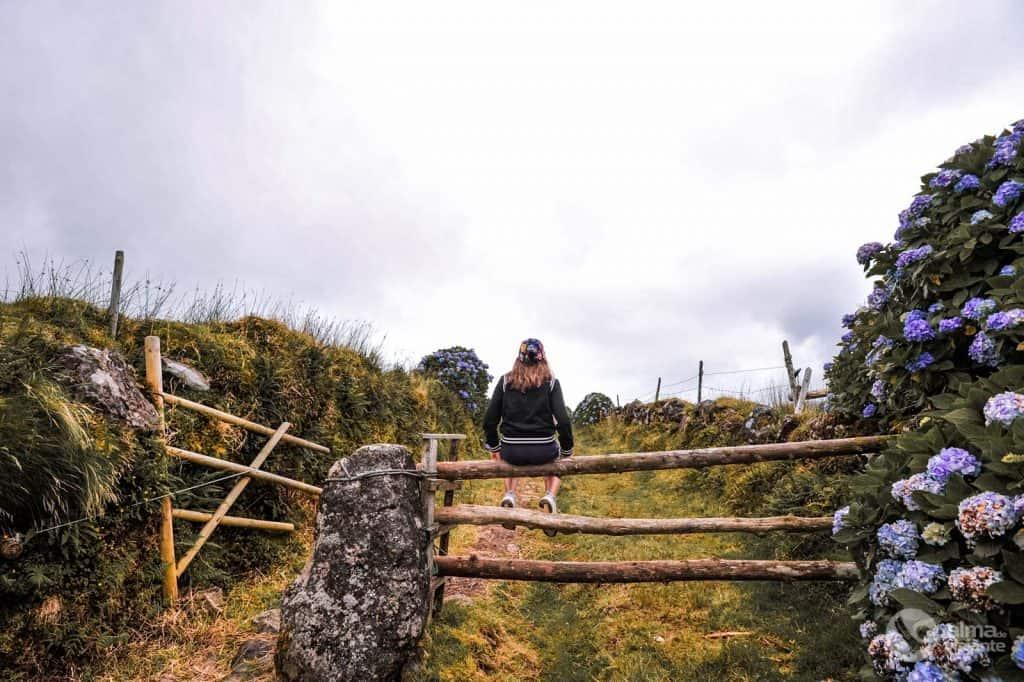 Cancela de madeira, São Jorge, Açores