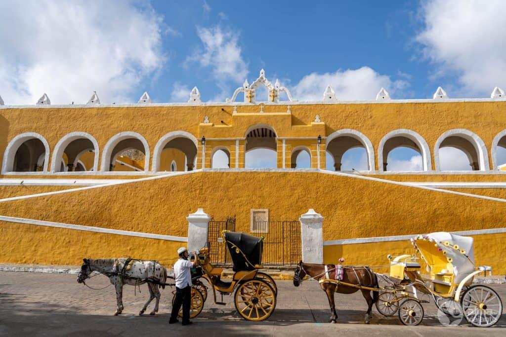 Cavalos junto ao Convento de Santo António
