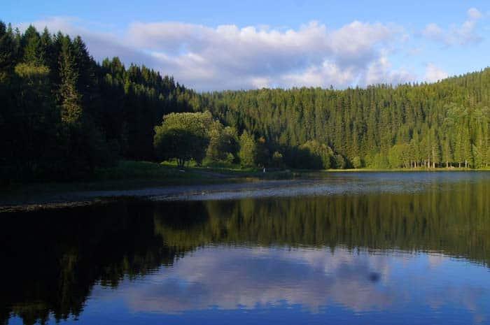 Lago Estenstaddammen, Trondheim