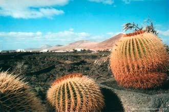 Vista do exterior da Fundação César Manrique, Lanzarote