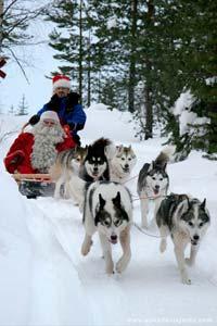 Pai Natal num trenó de huskies, Lapónia
