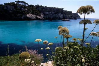Beleza natural de Menorca