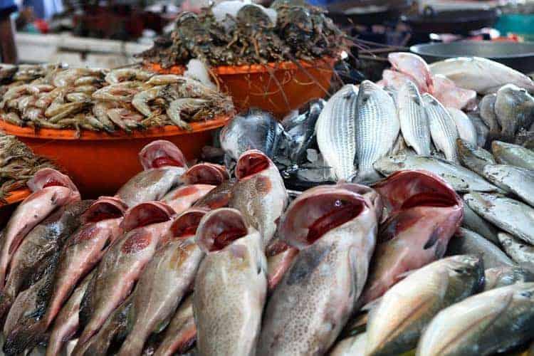 Mercado de Peixe, Dubai