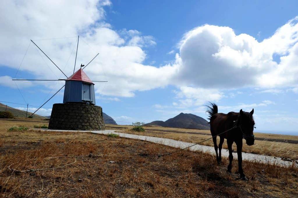 Fotos de Porto Santo: moinho