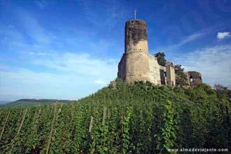 Vinhas e castelos no vale do Mosela