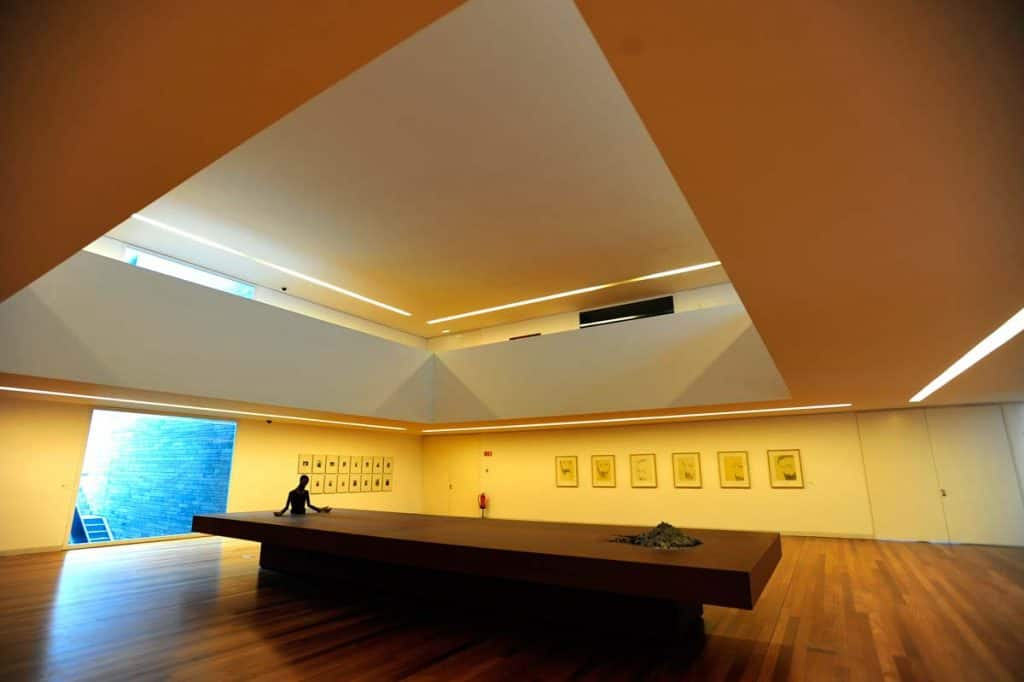 mudas-museu-madeira