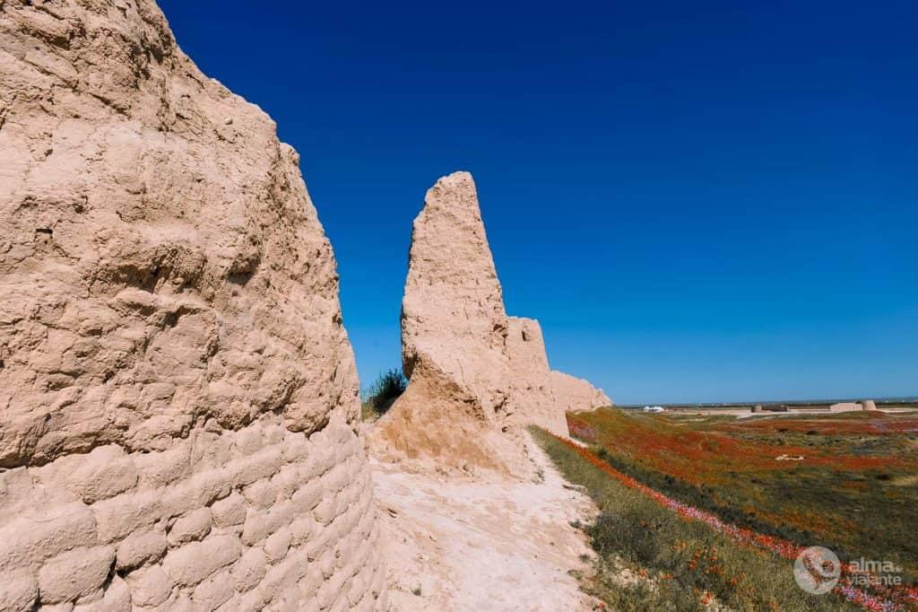 Walls of Sauran, Kazakhstan