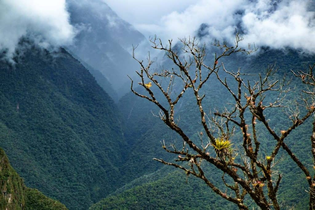 Machu Picchu handbók