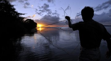 Visser op het eiland Ometepe, Lake Cocibolca, Nicaragua
