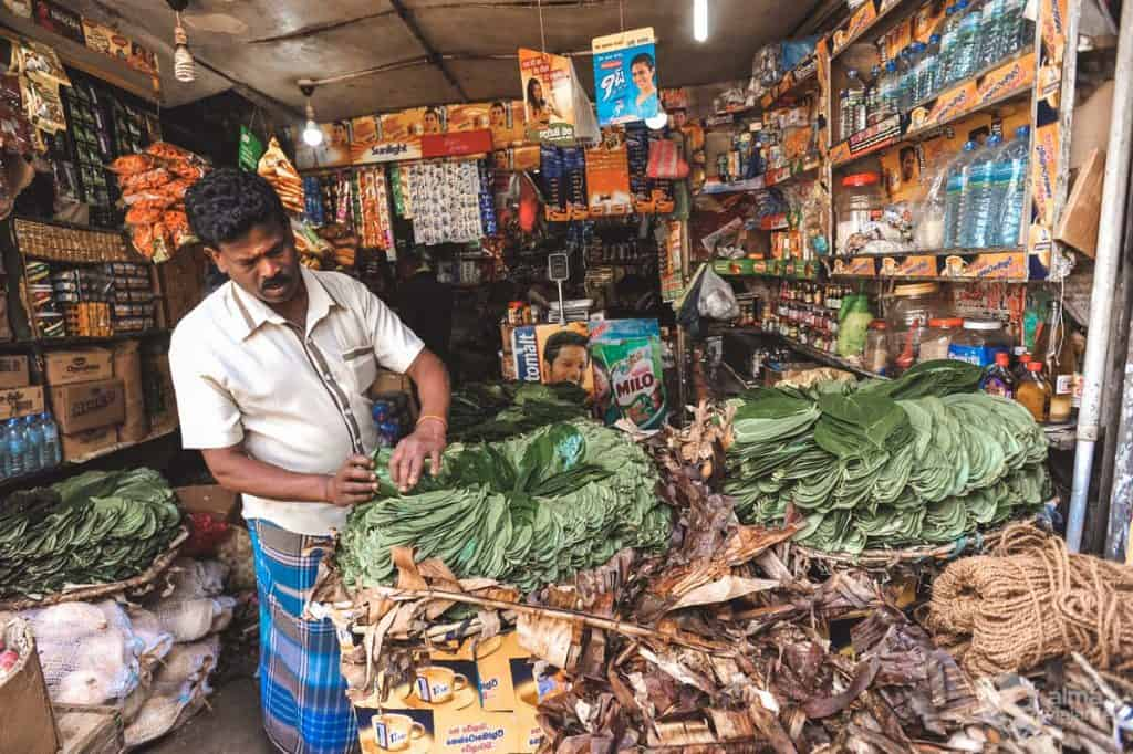 O que fazer em Nuwara Eliya: vendedor betel leaf