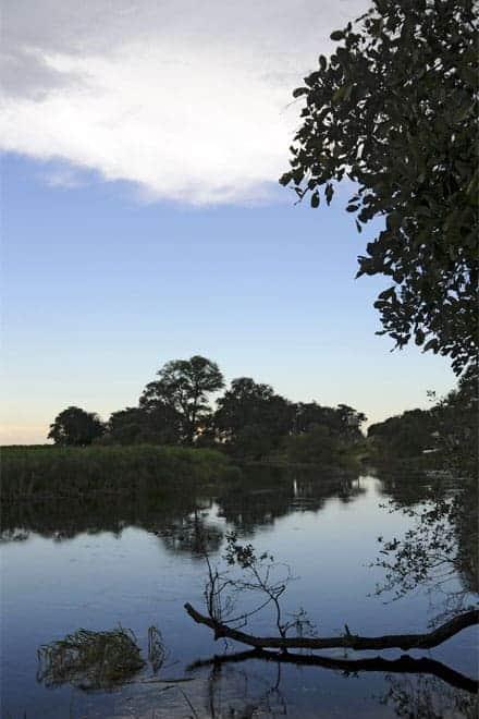 Útsýni af innri Okavango Delta