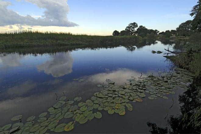 Okavango Delta, Botsvana