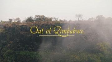 Out of Zimbabwe