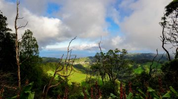 45 Fotos da Ilha de Santa Maria (Açores)