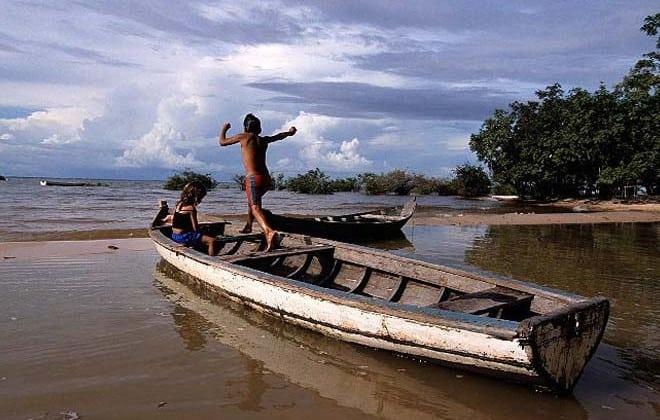 Pará, Segredos da Floresta