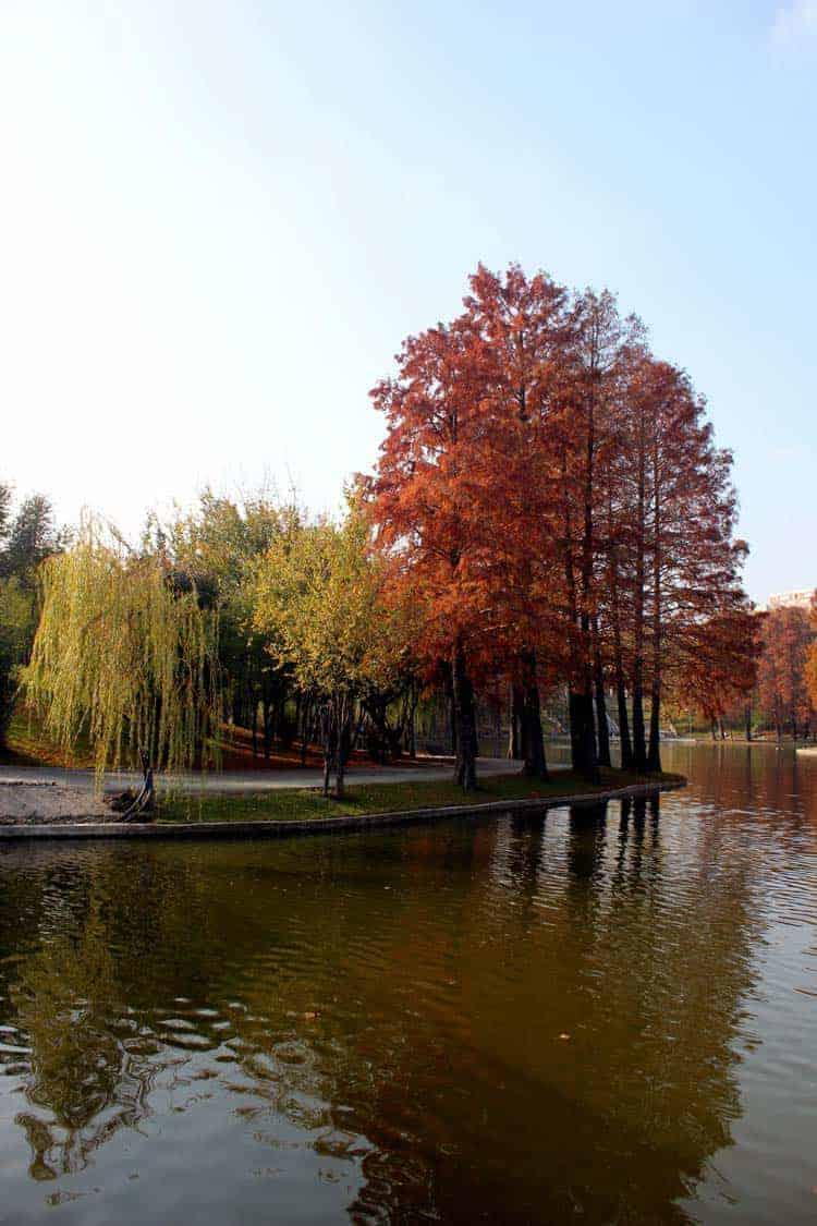 Dica Bucareste: Parque Alexandru Ioan Cuza