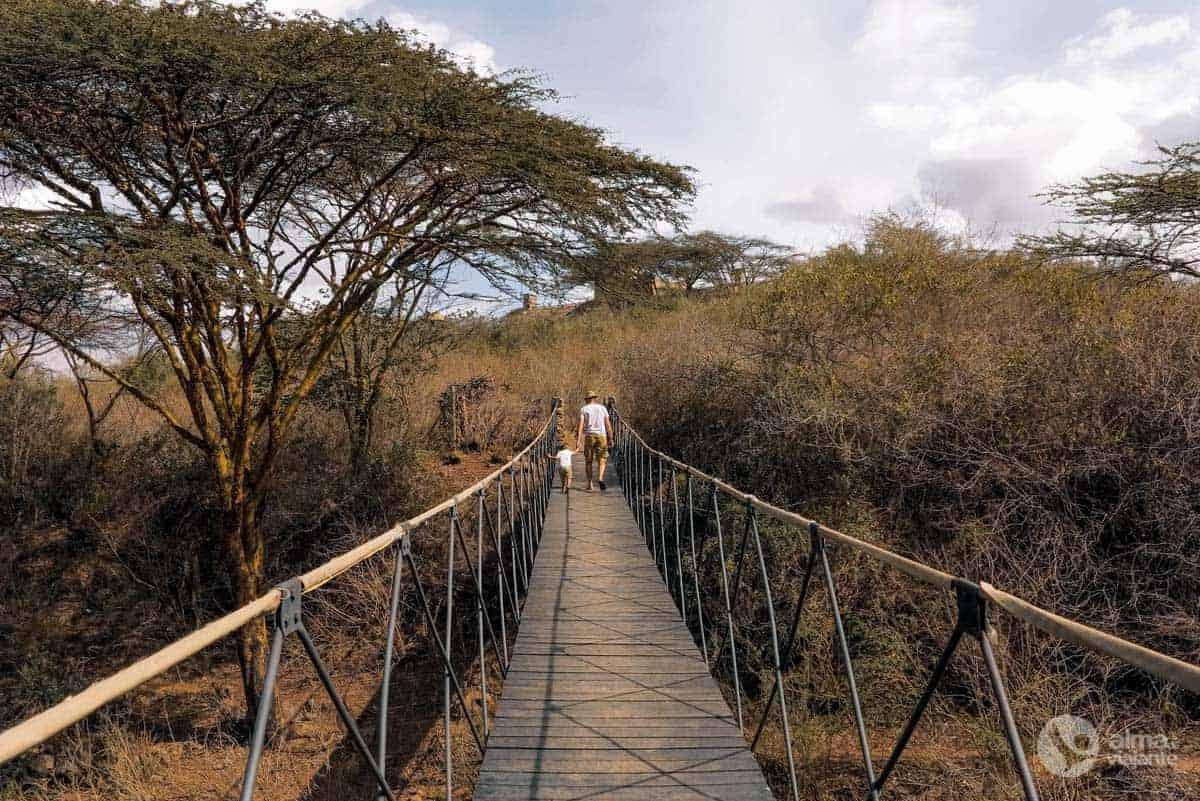 O que fazer em Nairobi: visitar Parque Nacional