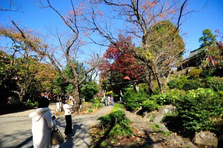 Parque Ueno, Tóquio