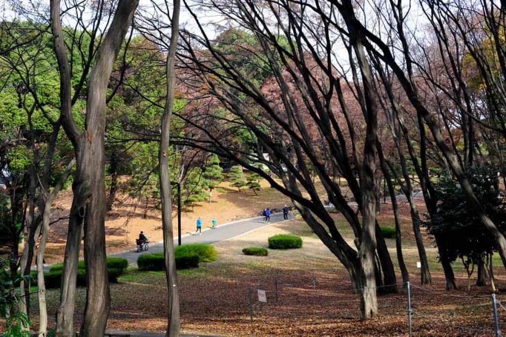 Correr no Parque Yoyogi