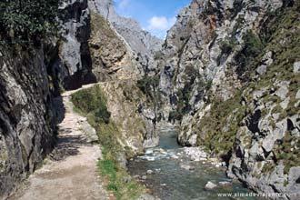 Trilho ao longo do desfiladeiro do rio Cares, Picos da Europa