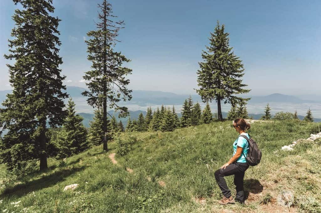 Trekking Poiana Brasov