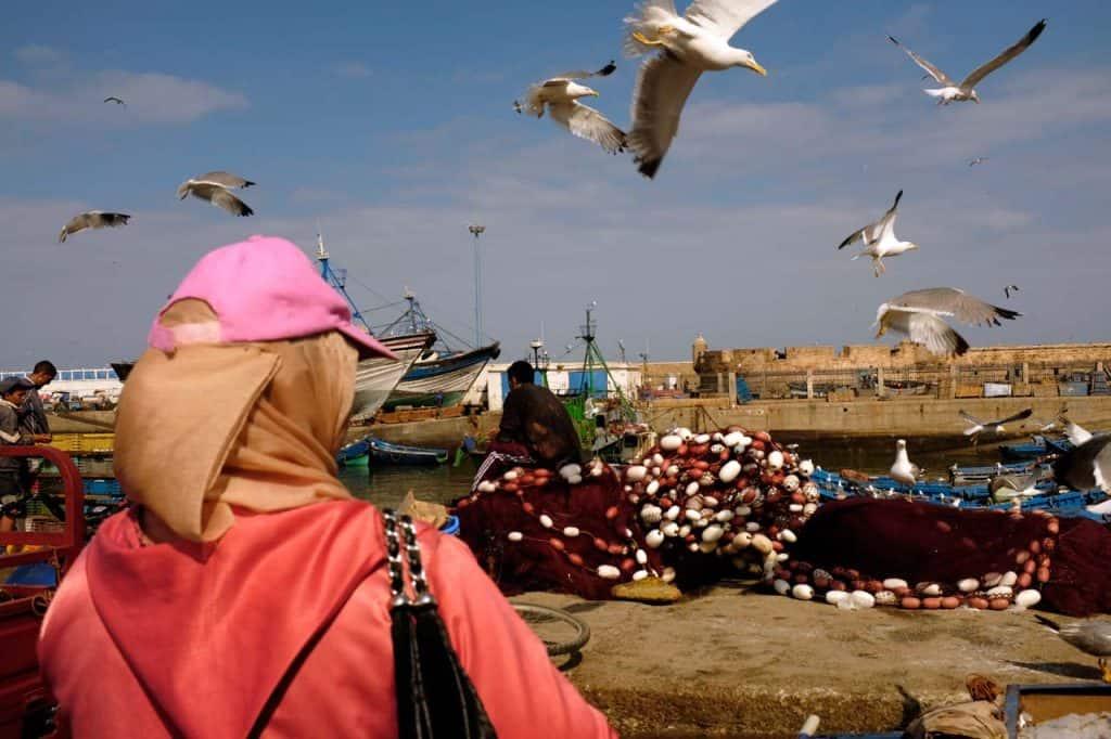 Porto de pesca Essaouira