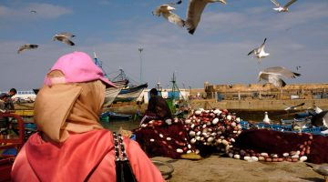 Porto de Essaouira, um mini-ensaio fotográfico