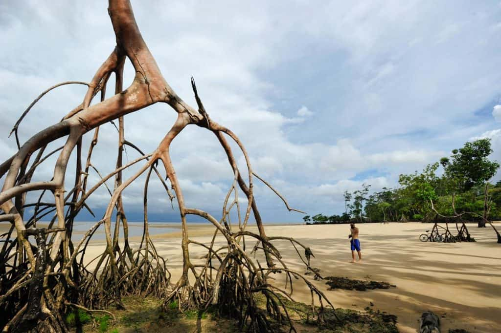 Visitar a Ilha do Marajó: Praia de Barra Velha