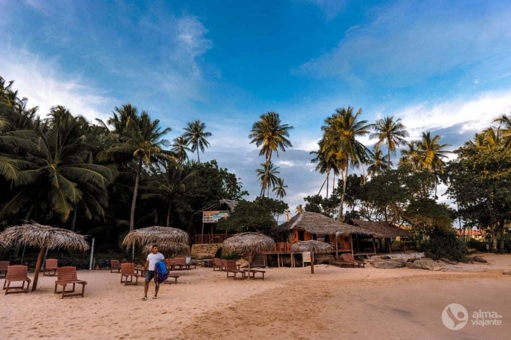 La plage de Goyambokka, script au Sri Lanka