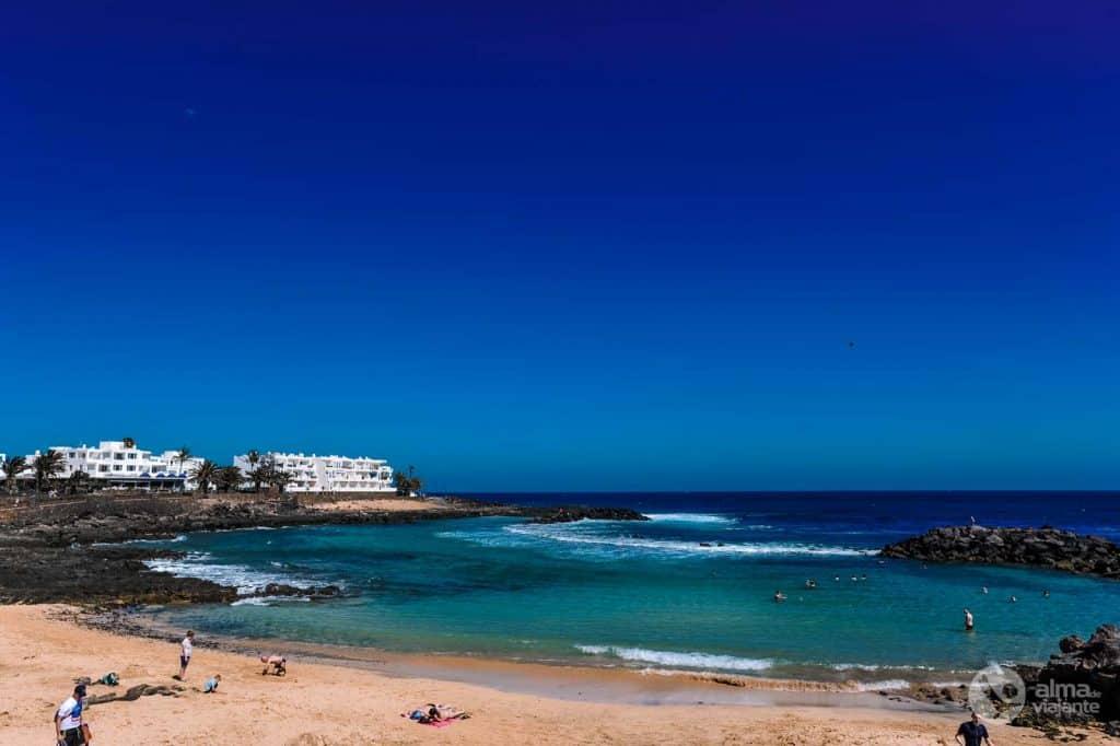 Jablillo pludmale, Lanzarote