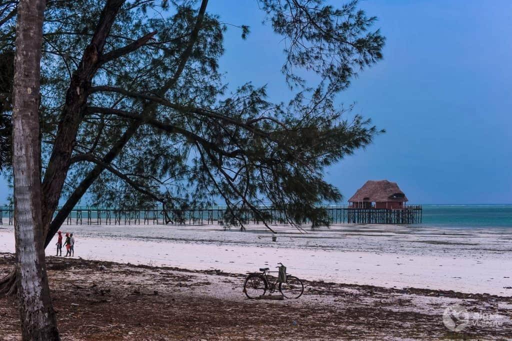 Praia Kiwengwa, Zanzibar