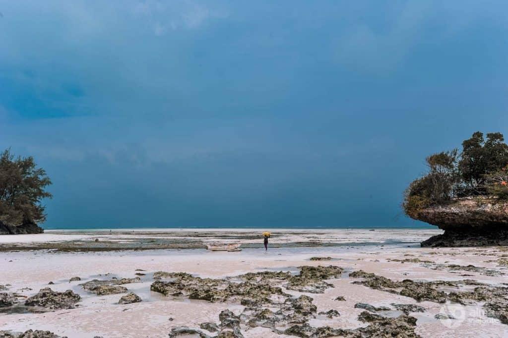 ザンジバル島で最高のビーチ:Pongwe