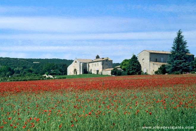 Paisagem típica da Provença, Sul de França