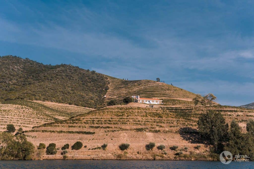 Quinta de Ventozelo, Ervedosa do Douro