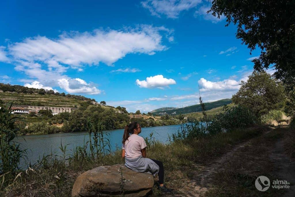 Trekking Trilho do Vinho do Porto