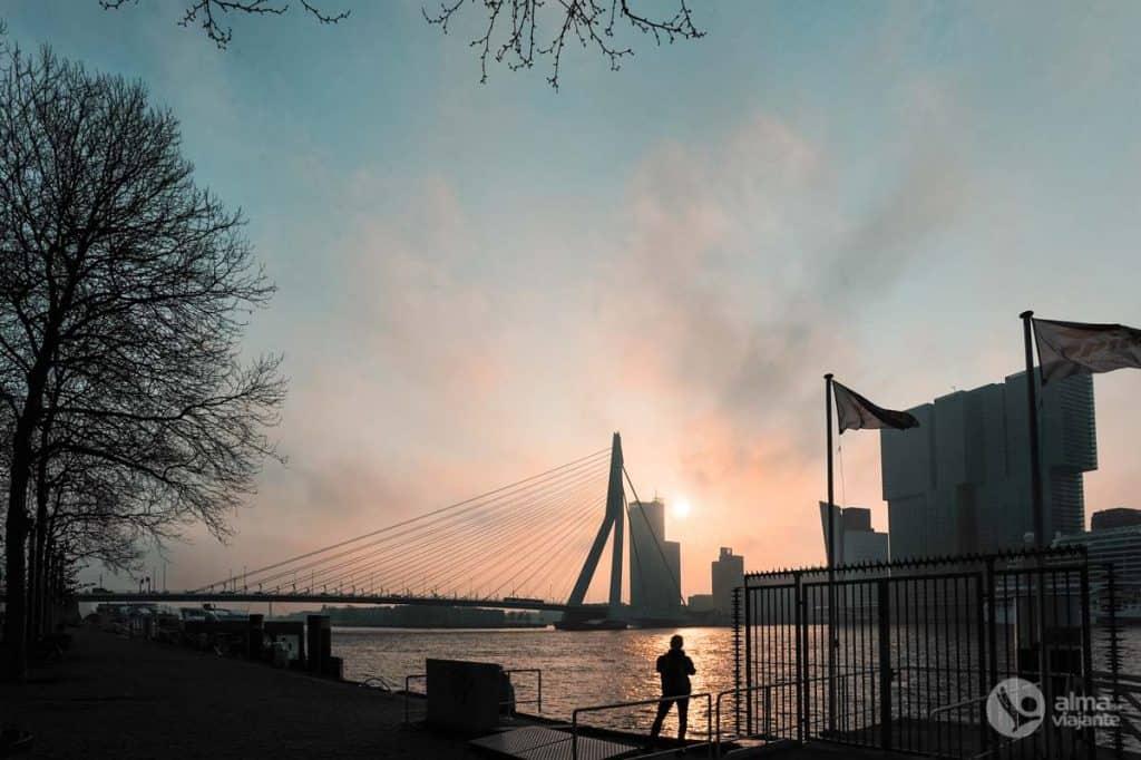 O que visitar em Roterdão: ponte Erasmus