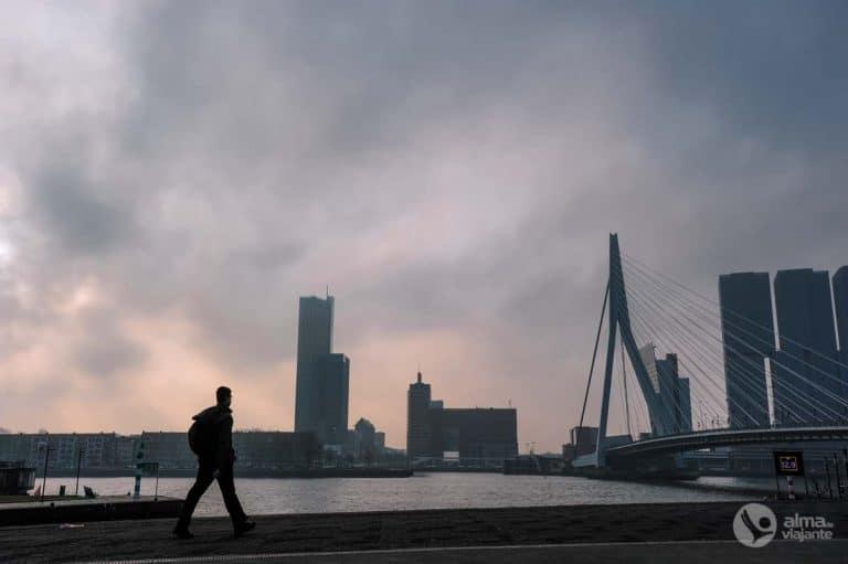Ponte Erasmus, Roterdão