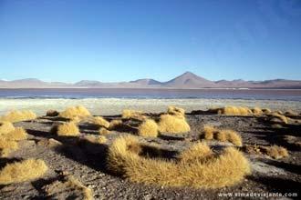 A Laguna Colorada, a quase cinco mil metros de altitude