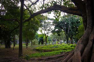 Jardim da Pinacoteca do Estado de São Paulo