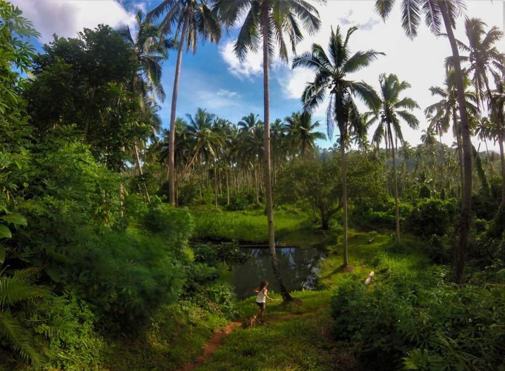 Heitur laug í Savusavu, Fiji