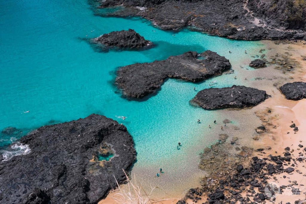 Snorkelling in the Bay of Pigs, Noronha