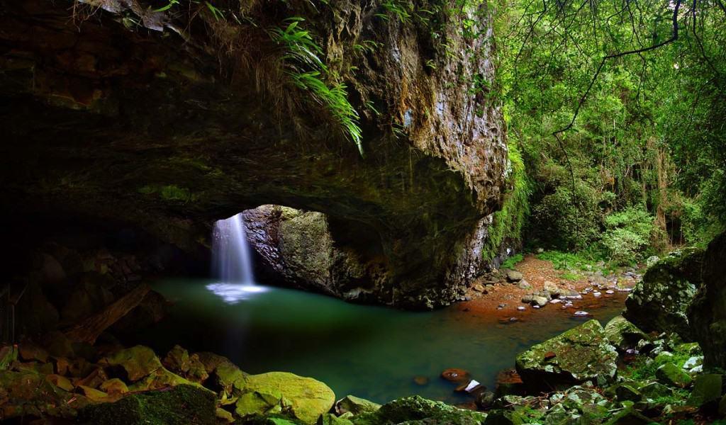 Nacionalni park Springbrook, Gold Coast