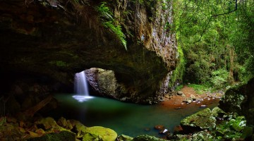 Springbrook National Park, Gold Coast