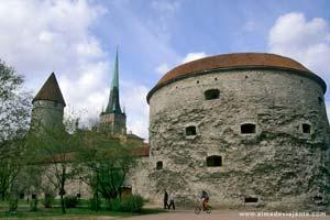 Miðbær Tallinn