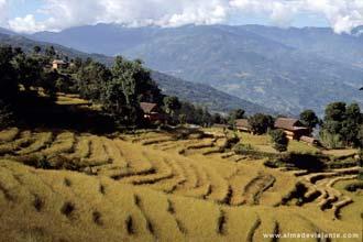 Taplejung, Nepal