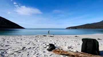 Ilha da Tasmânia