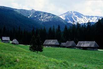 Vale de Dolina Chocholowska, Polónia