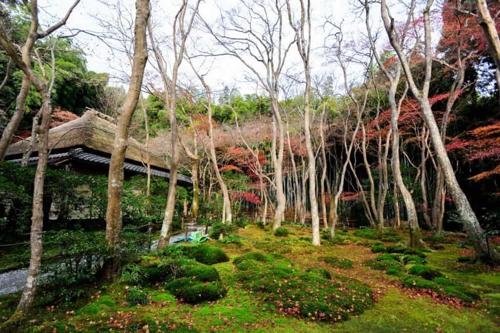O que fazer em Kyoto: Templo Gio-ji, Arashiyama