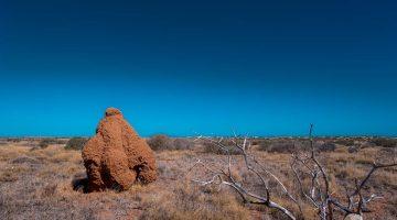 Giant summit, Australia